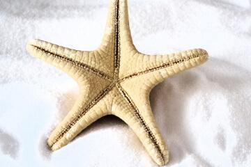 DIY Sea Salt pro plážové vlny