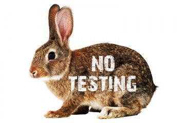 Zákaz testování kosmetiky na zvířatech