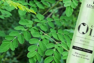 Lendan Oil Essences Ethernal Moringa