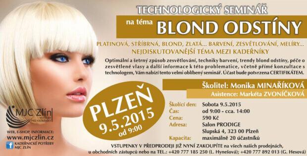 Školení na téma Blond Odstíny Plzeň