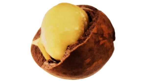 Makadamové ořechy na vlasy